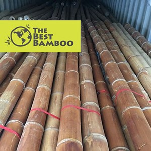 bamboo-wholesale.jpg