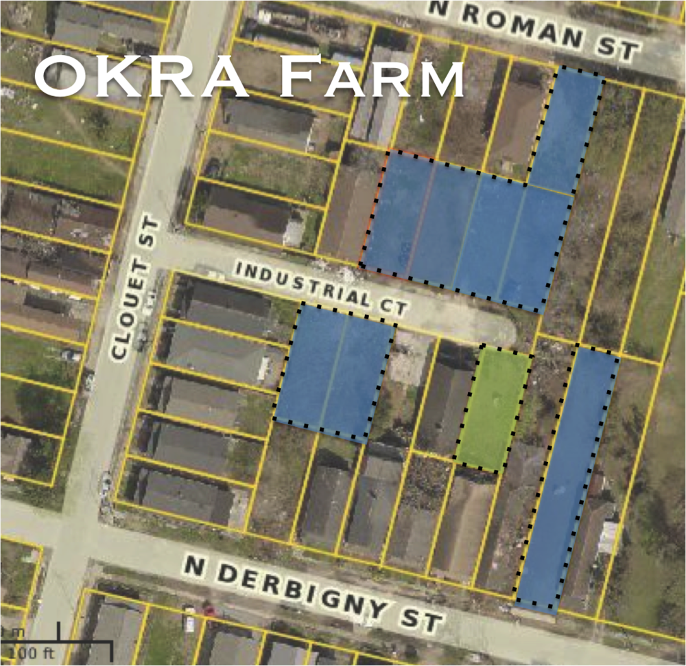 okra farm pic.png