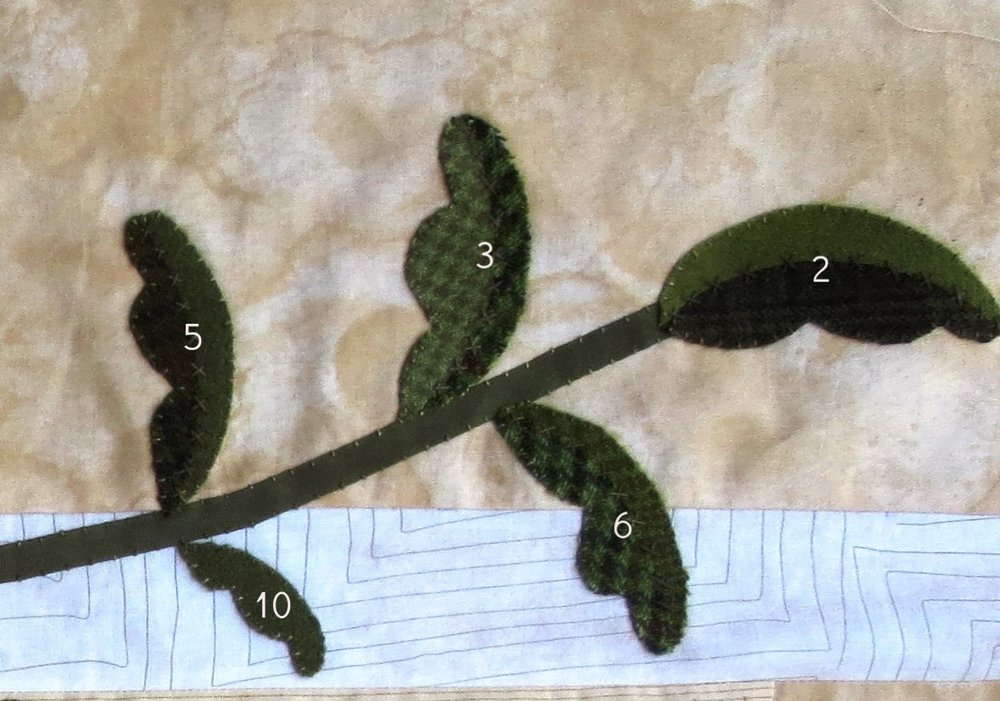 Layout of leave on border vine