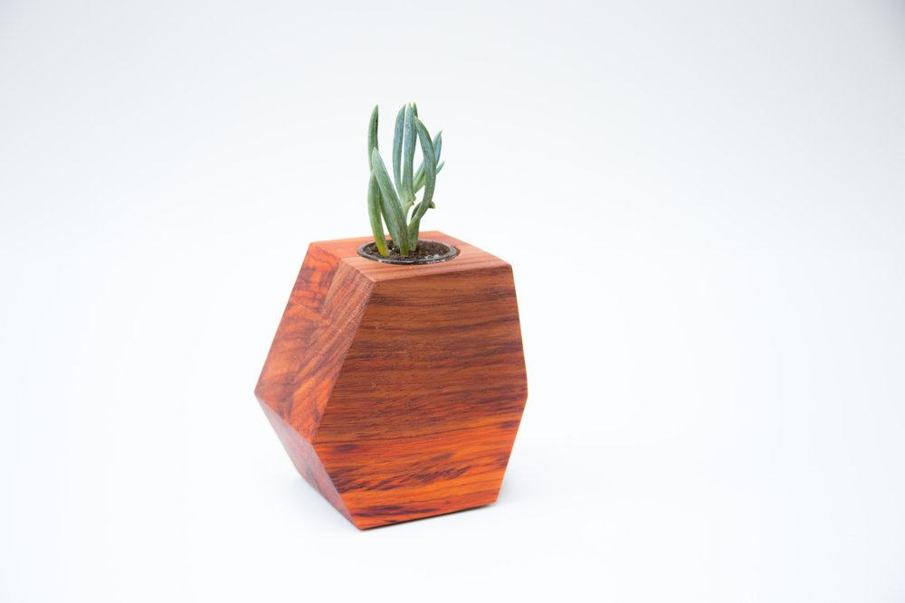 Paduak Hexagon Planter