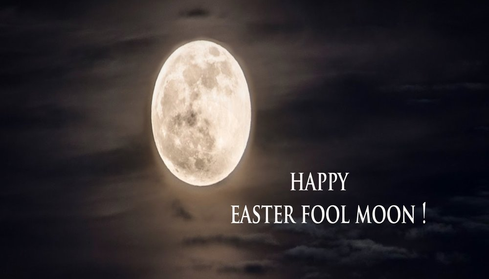 happy fool moon2.jpg