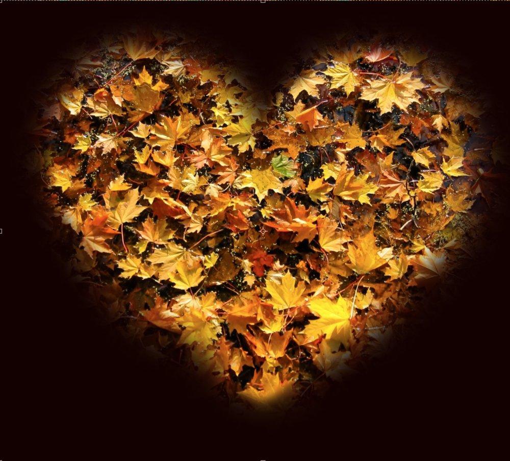 Fall Heart.jpg