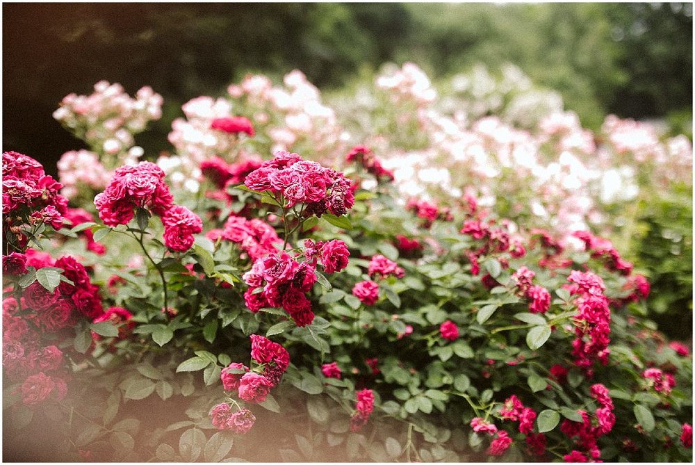 bright pink flowers at brooklyn botanic garden wedding