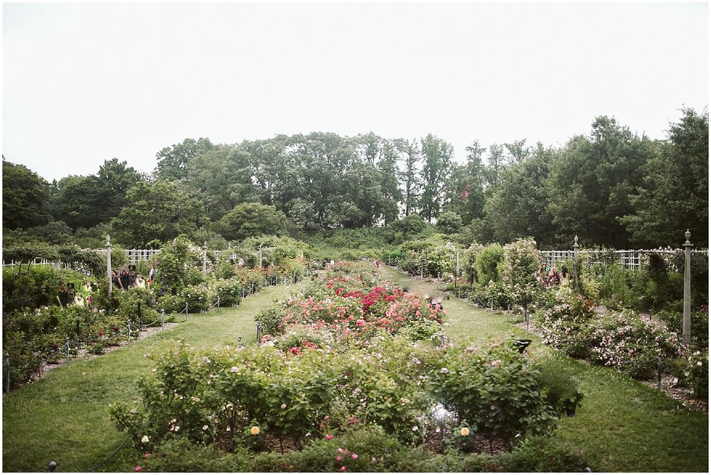 outdoor wedding at brooklyn botanic garden