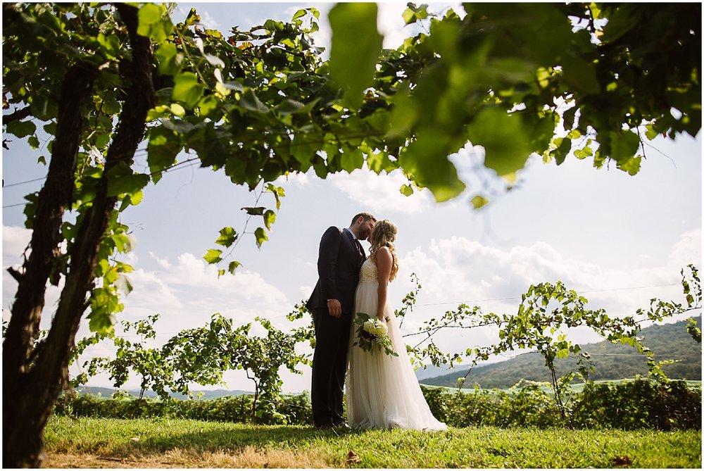 perfect wedding at debarge winery