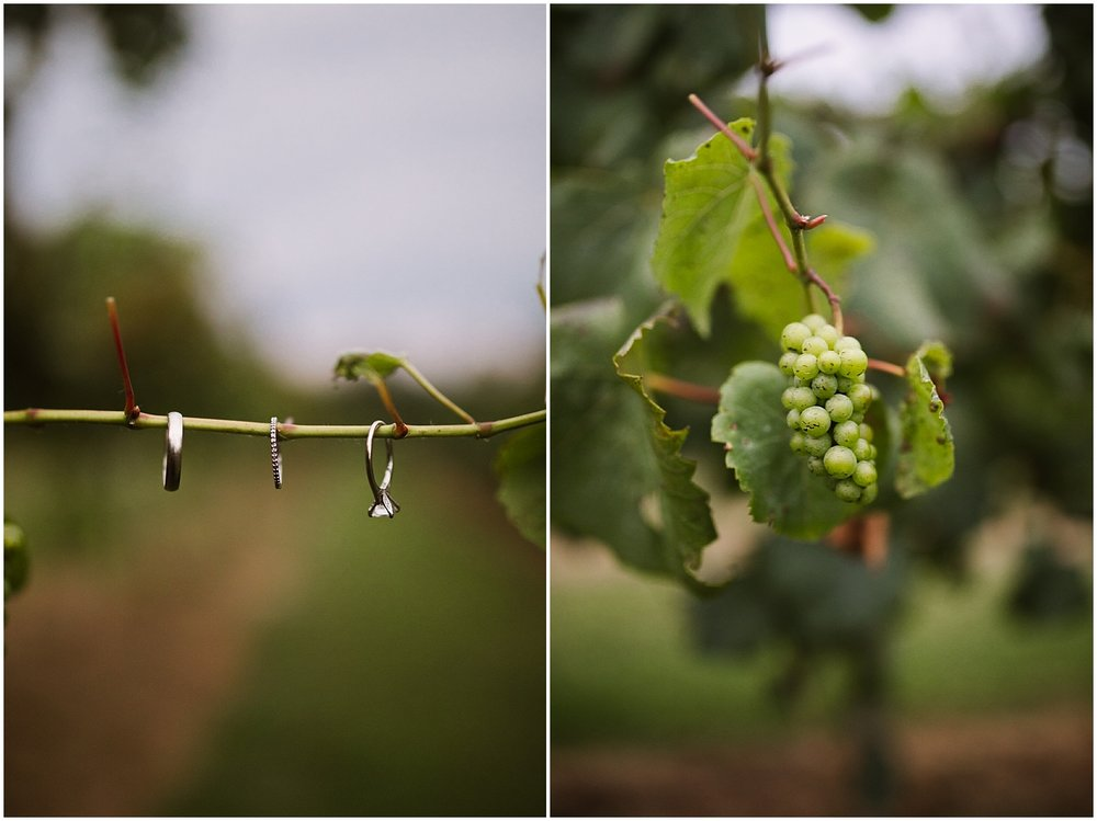 debarge vineyard and winery