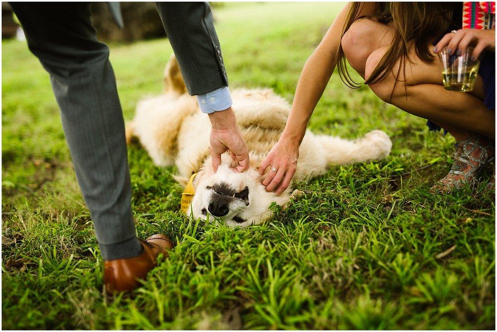 debarge winery dog