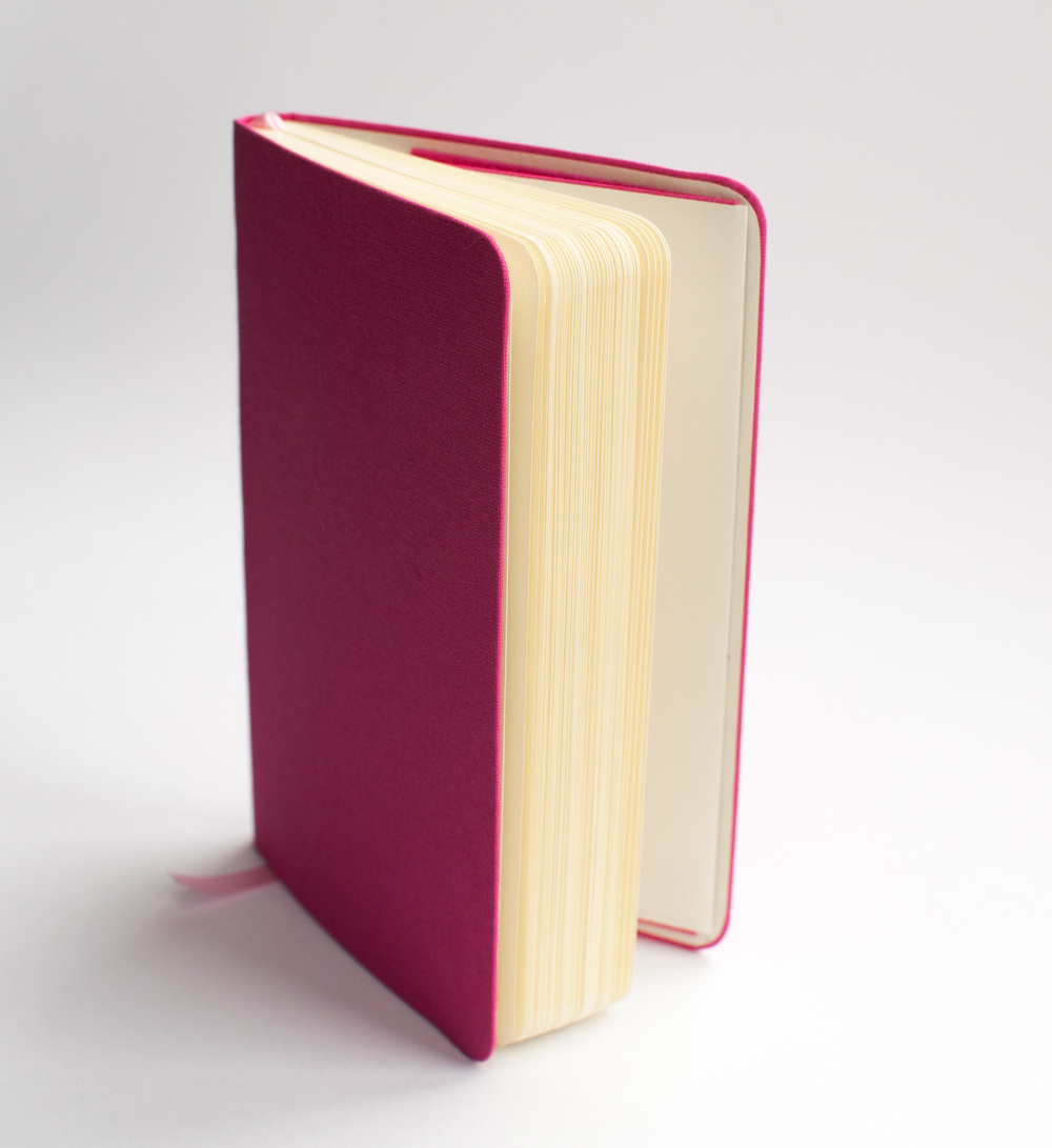 Pink travel notebook 1.jpg