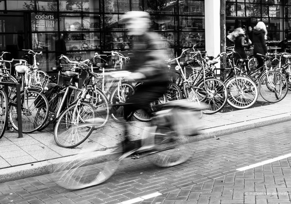 Bicyclist in Rotterdam.