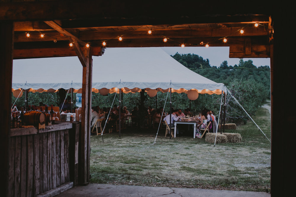 LIBERTY_VIEW_FARM_HIGHLAND_NY_WEDDING_CHELLISE_MICHAEL_PHOTOGRAPHY869.JPG