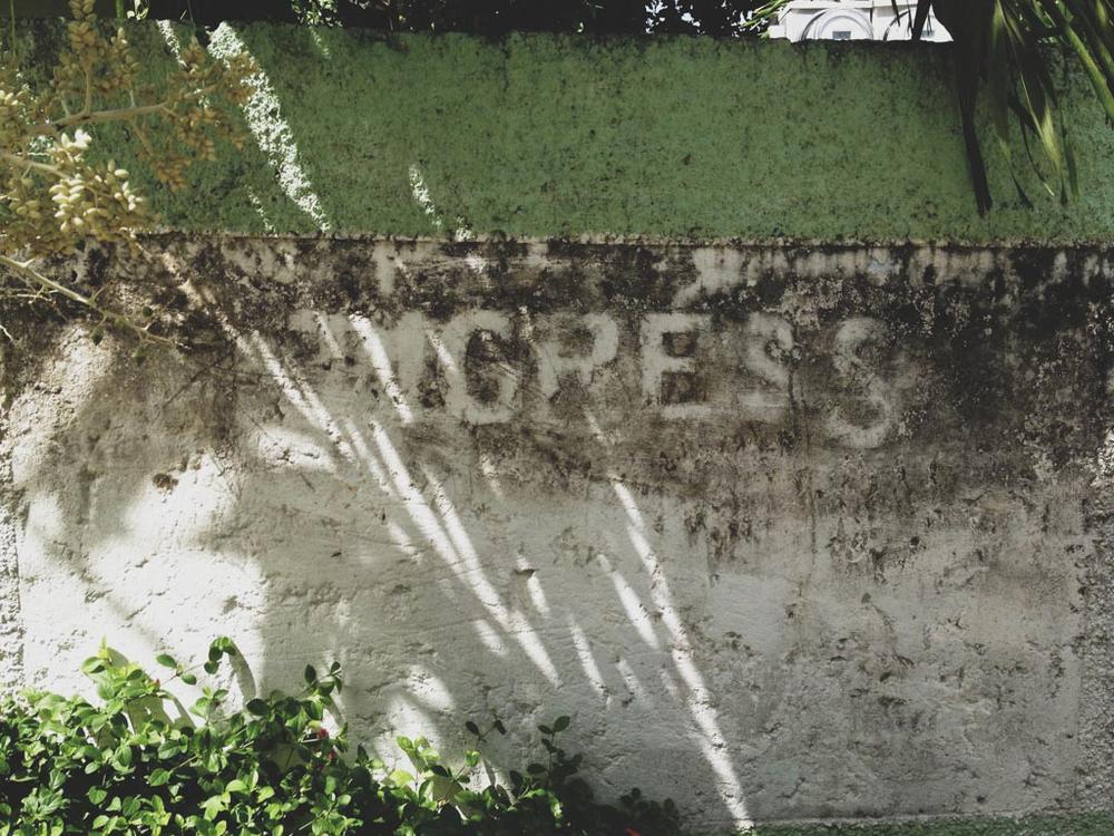 negril jamaica montego bay tensing pen black river chellise michael photography-117.jpg