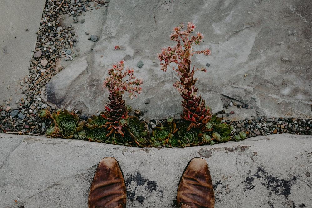 CatskillsWeddingPhotographerChelliseMichaelPhotography-173.jpg