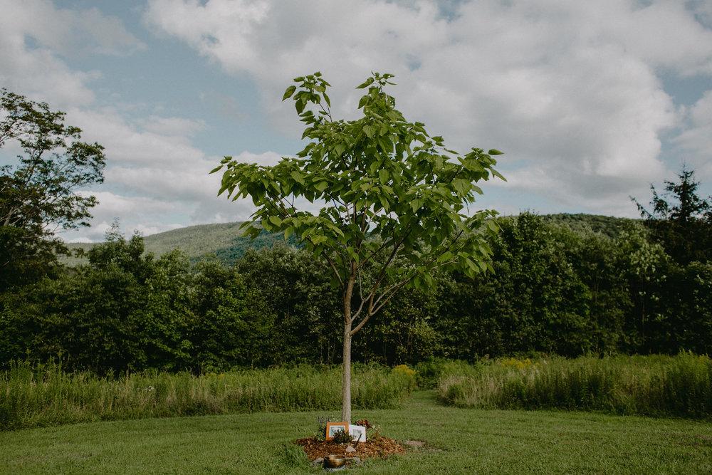CatskillsWeddingPhotographerChelliseMichaelPhotography-190.jpg
