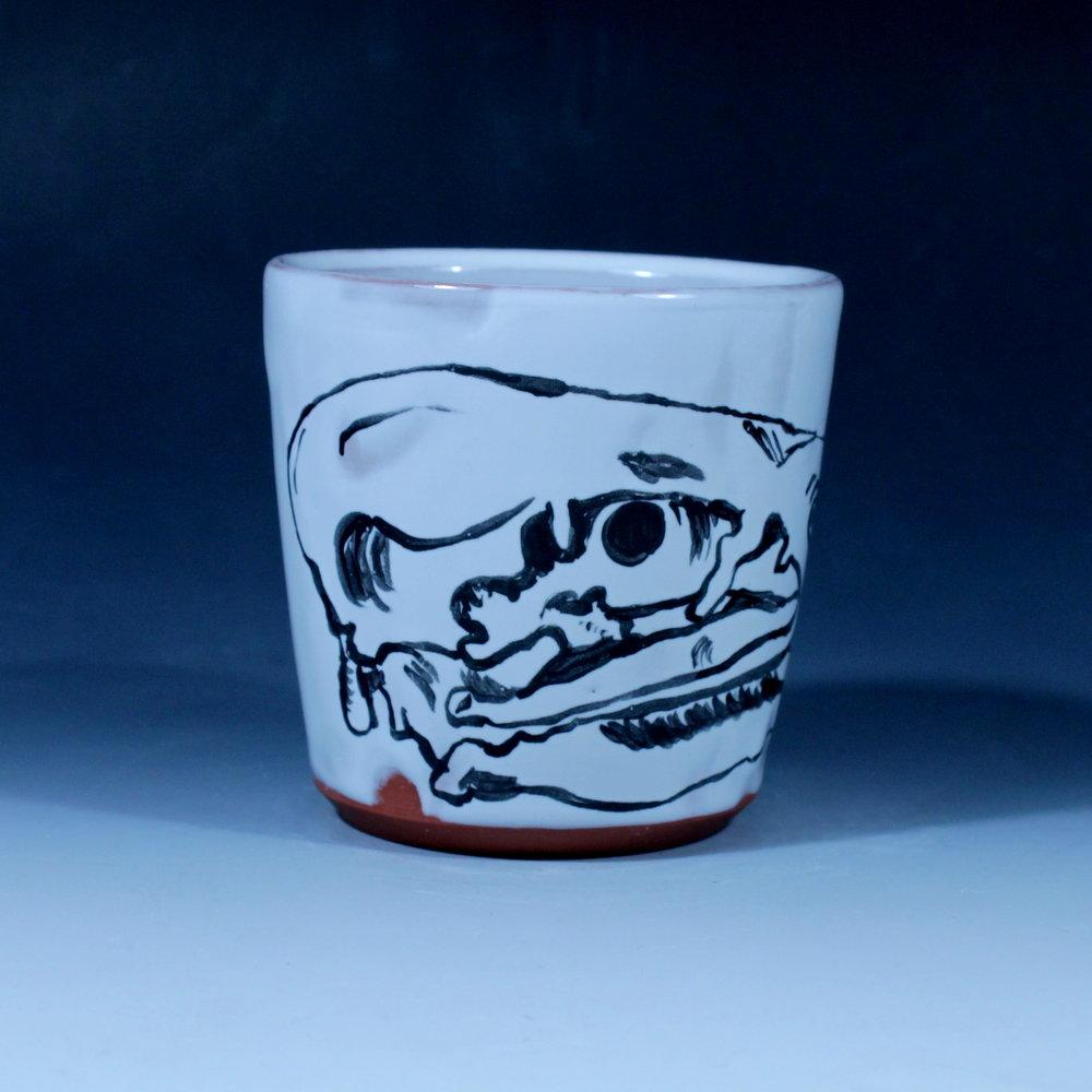 cupcondor01.JPG