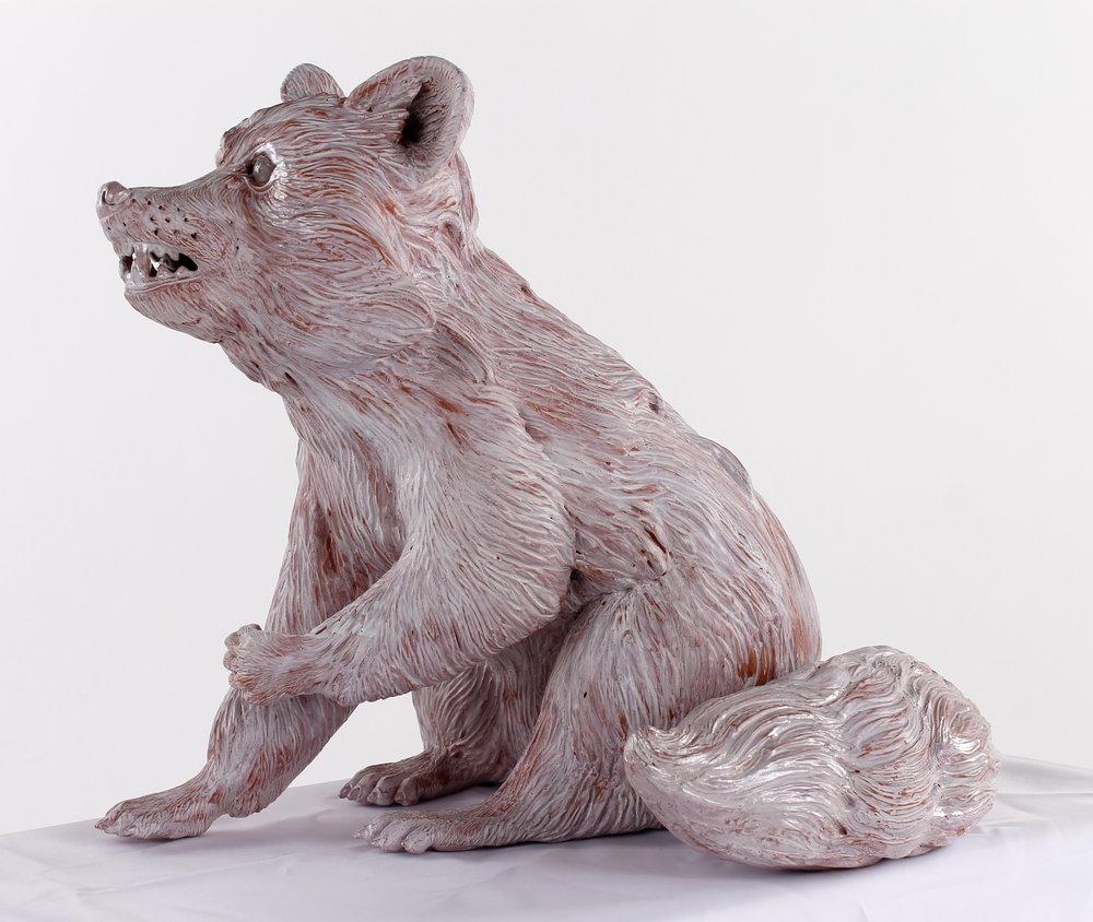 Raccoon02.JPG