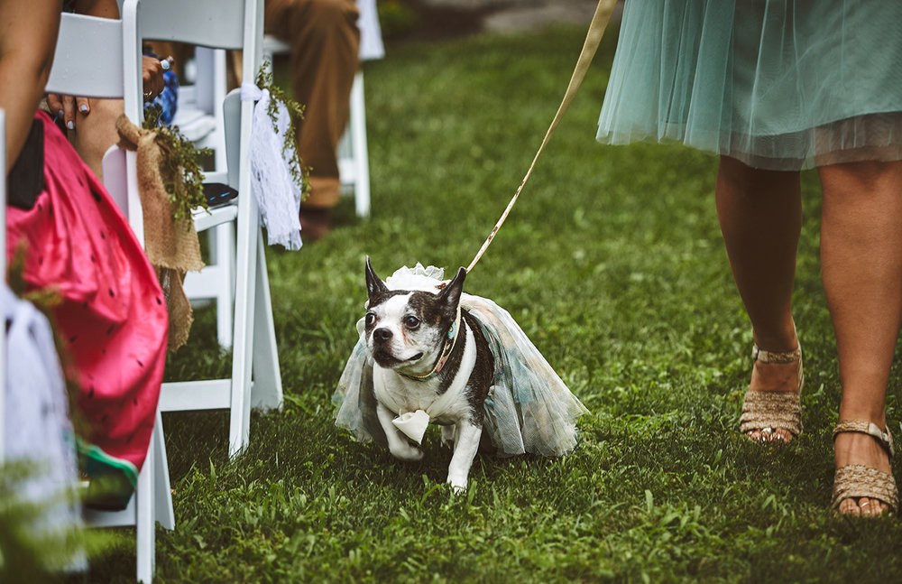 170722_Pennsylvania_RusticBackyardWedding_By_BriJohnsonWeddings_0044.jpg