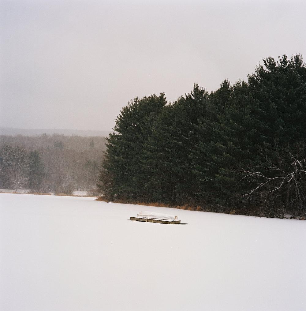 Landscape Pond.jpg