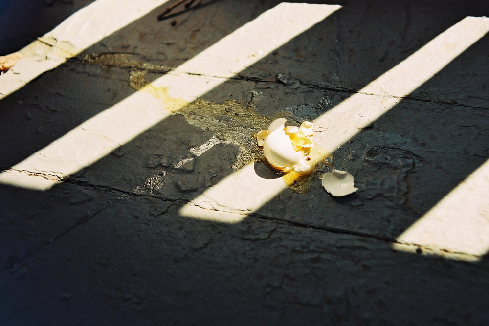 Broken Egg.jpg