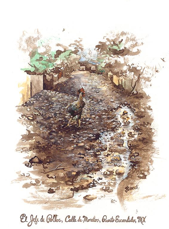 El Jefe de Pollos