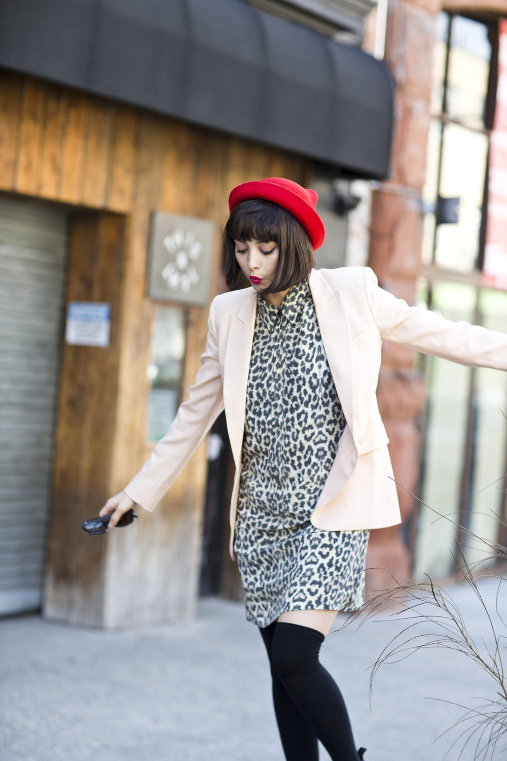 TaylorLaShae_Equipment_LeopardDress+Jacket_2.jpg