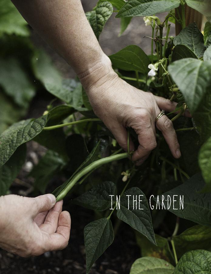 In The Garden by © Honest Magazine