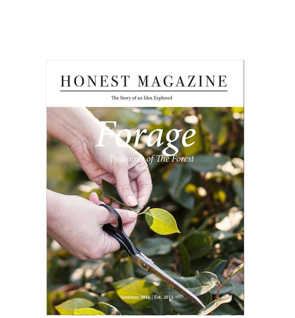 Forage_Issue_Cover copy.jpg