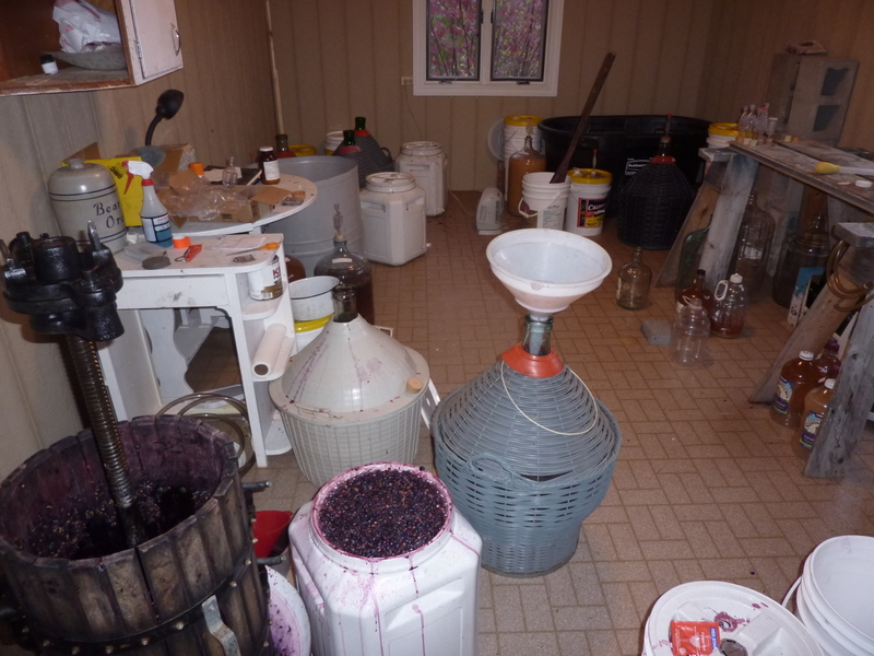 Wine Making 2014
