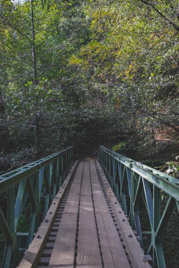 Sturtevant Falls Trail main bridge