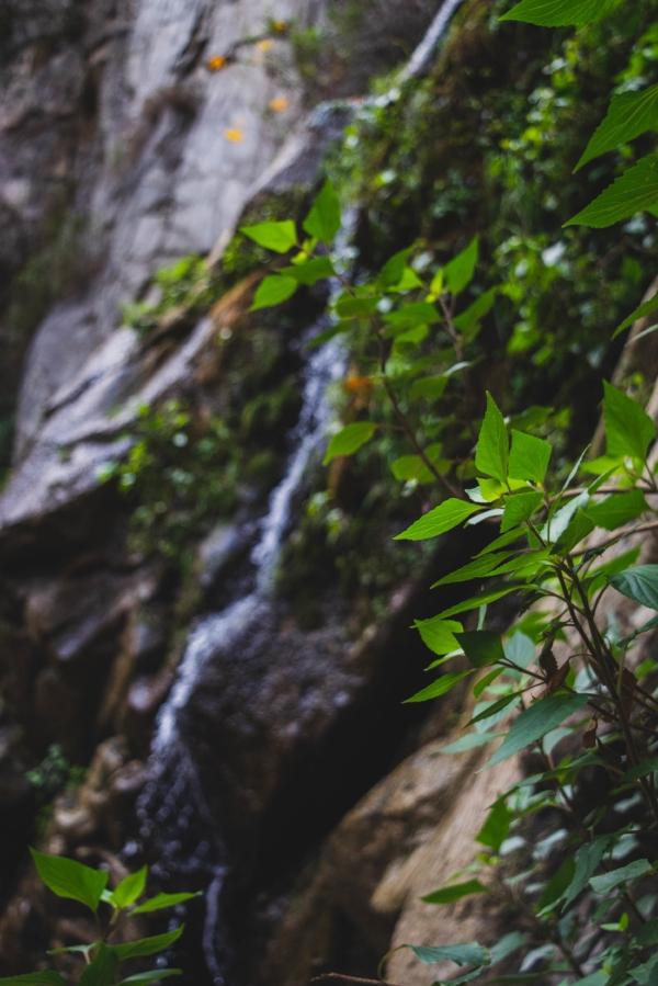 Sturtevant Falls Trail waterfall 2