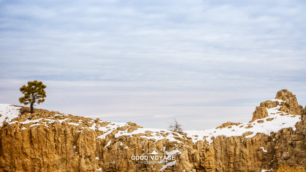 _0008_bryce-sunrise-point.png