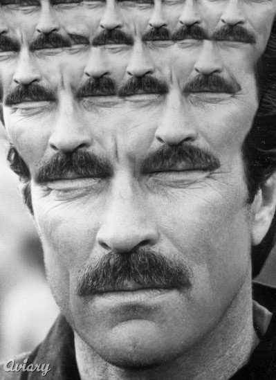 fractal-tom-selleck.jpg