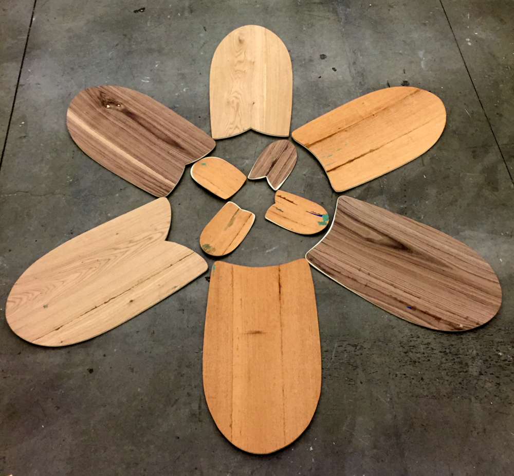 Paipo bodyboards and hand planes by Lawrence labianca