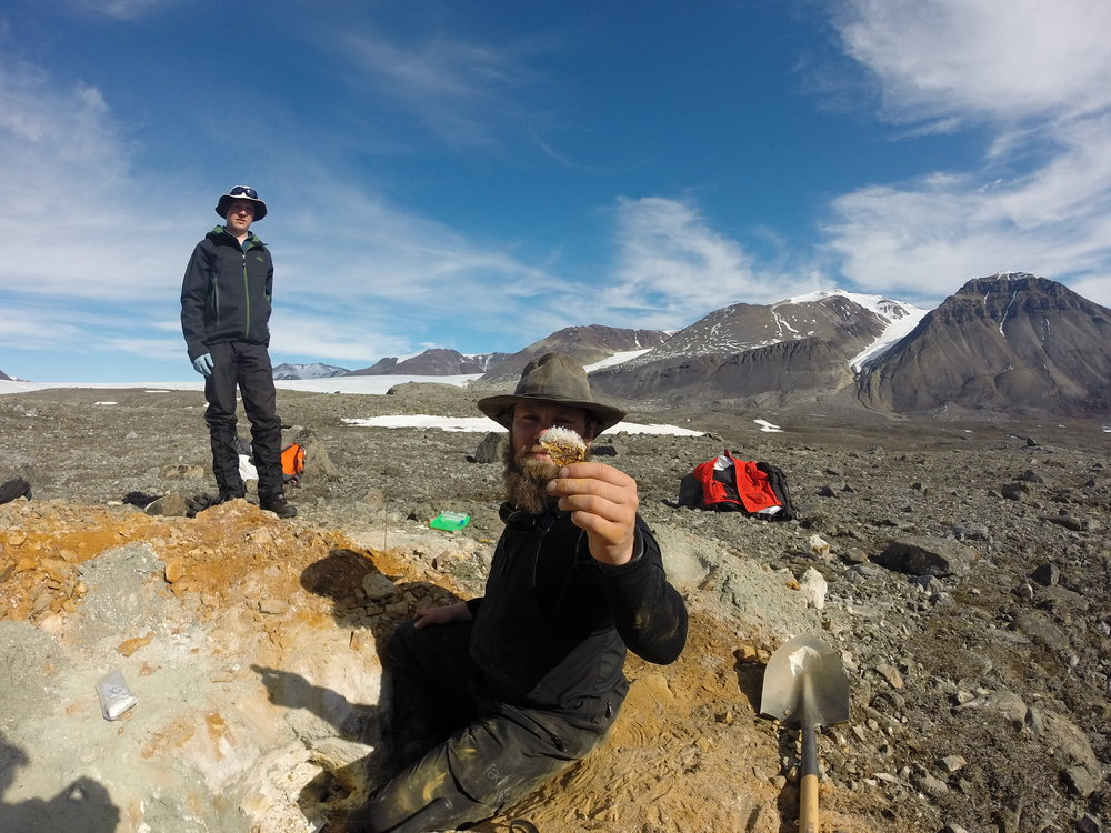 These ice crystals had formed on iron- and sulfur-rich minerals within cavities inside of pyrite alteration features at Borup Fiord Pass.  Christopher Trivedi  of the Colorado School of Mines looks on as I ponder the ice.