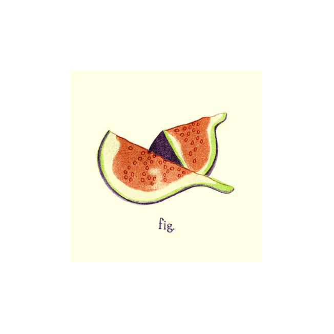 fig. (a)