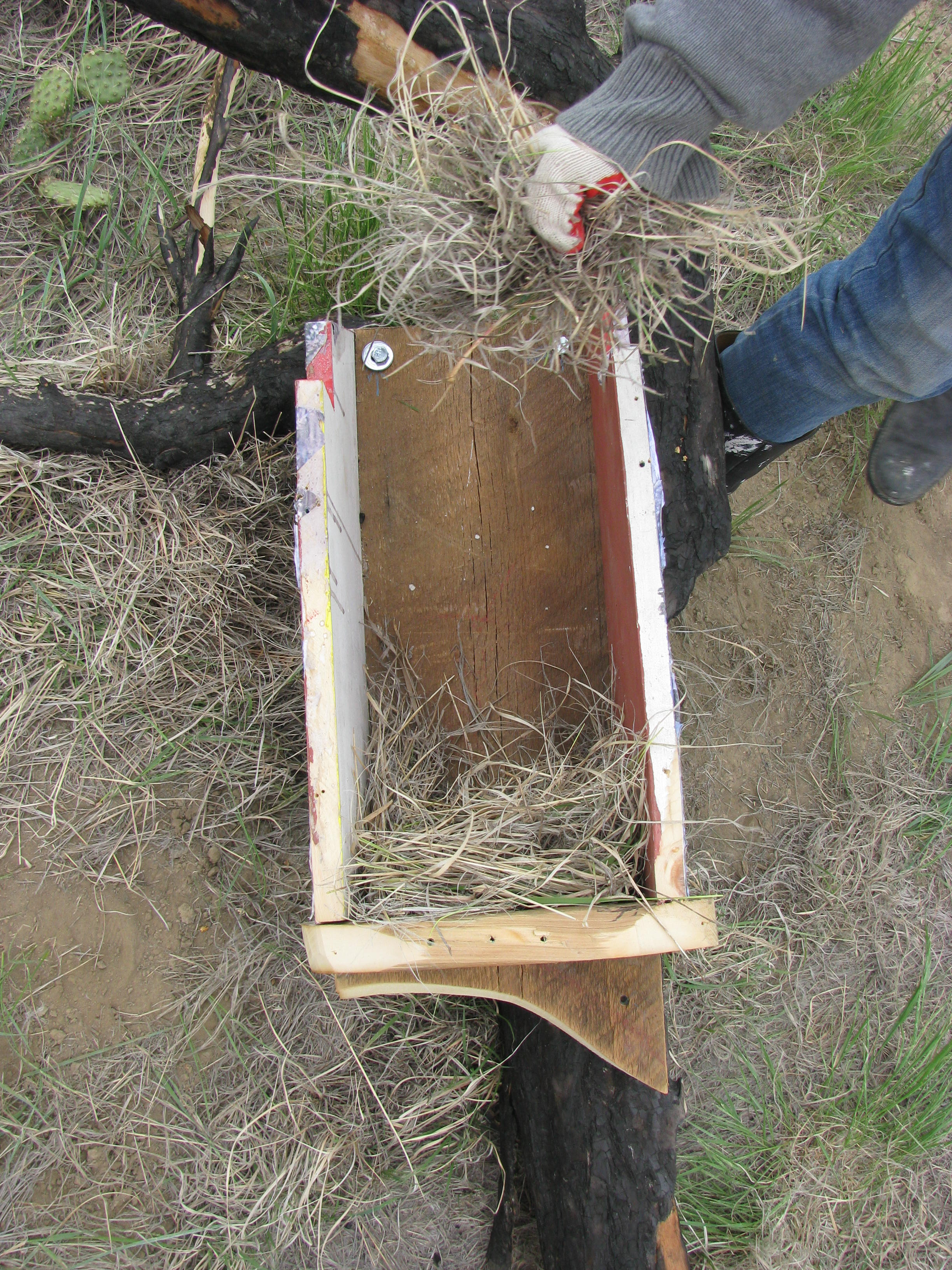 Preparing the Kestrel Box