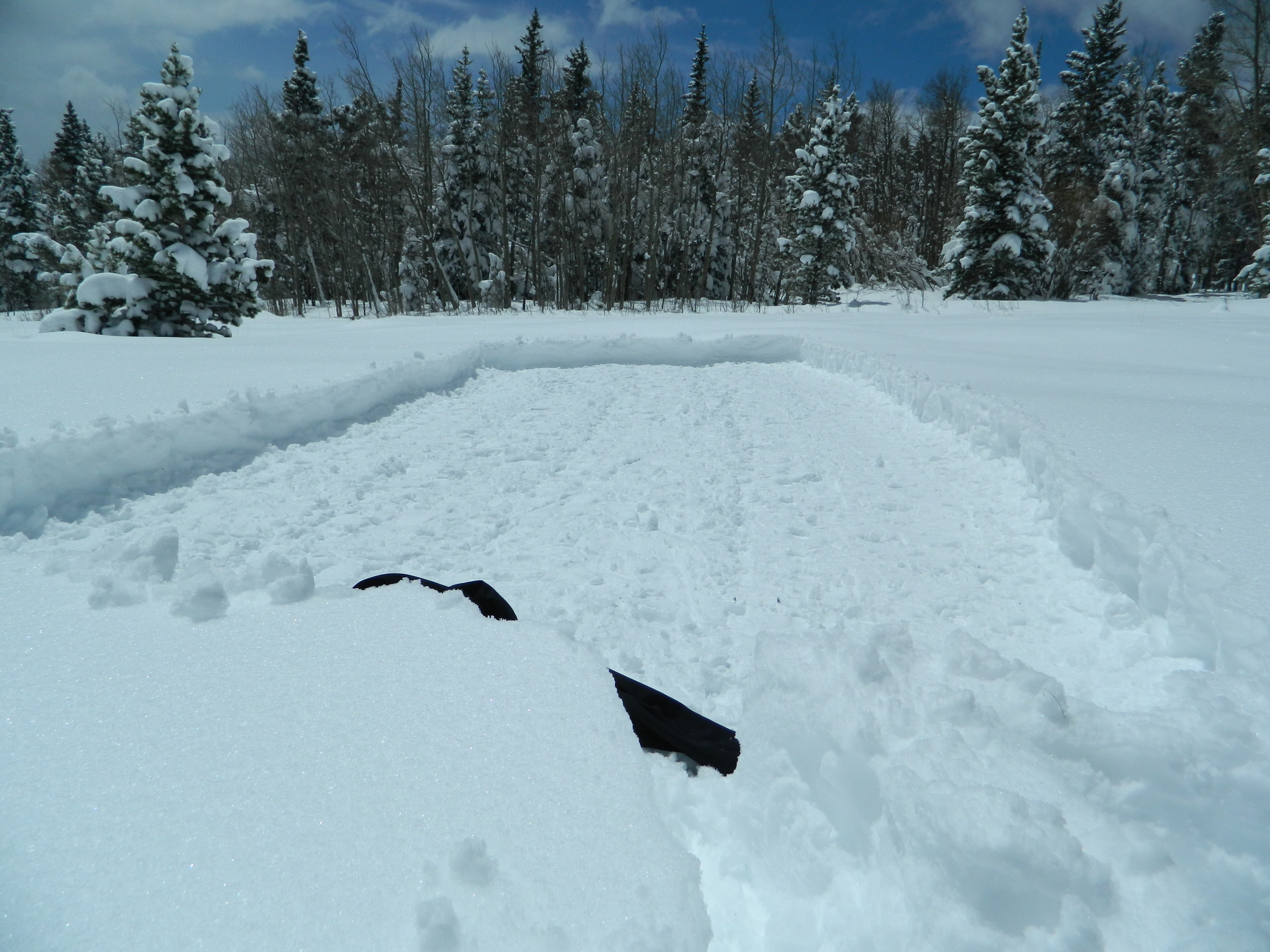 The area I flattened out in my snow shoes to create my site specific piece.