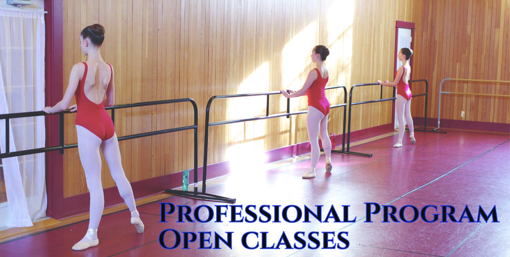 CPDP Open class b cover-01.jpg