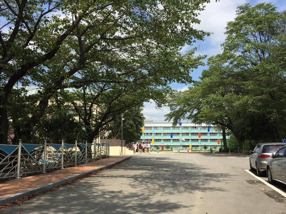 언덕 위에 위치한 홍익 디자인고등학교는 나무 숲길을 따라 올라가다 오면 나오는데, 건물이 디자인 고등학교다운 모습을 보여주고 있습니다.