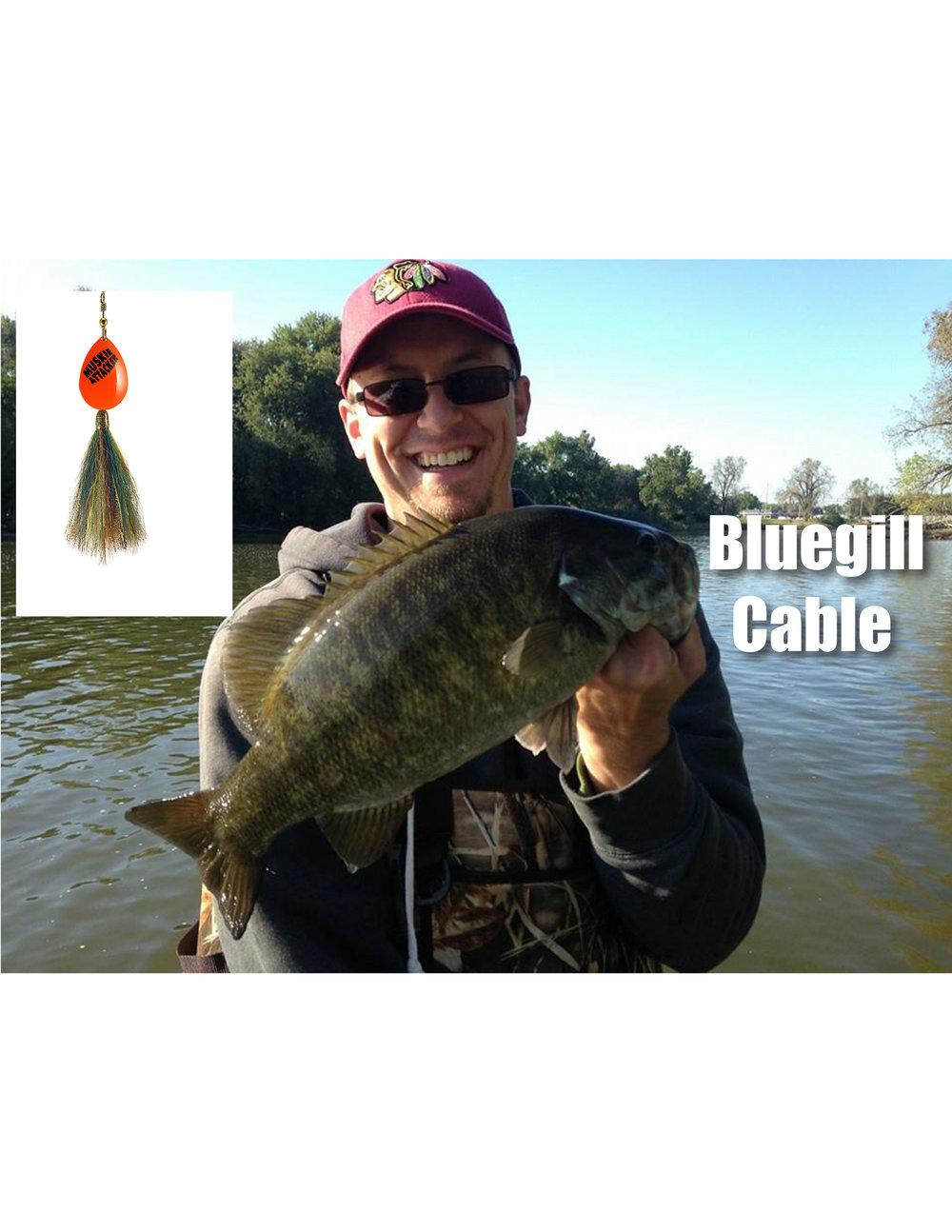 bluegill cable.jpg