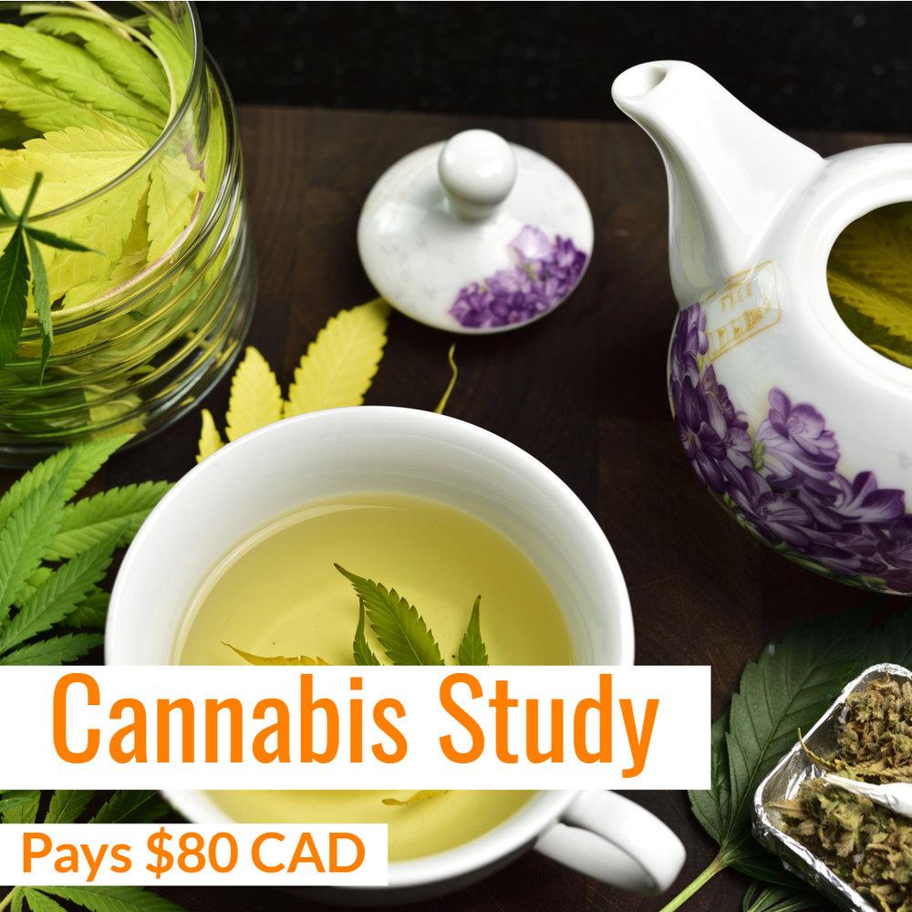 Gold & Gold Cannabis Study.jpg