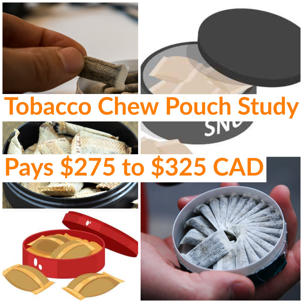 Gold & Gold Tobacco Chew Pouch Study (1).jpg
