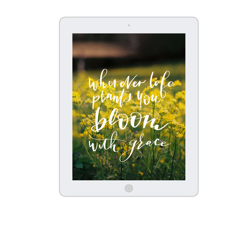 iPad_Artwork_WhereverLife_OMAC.jpg