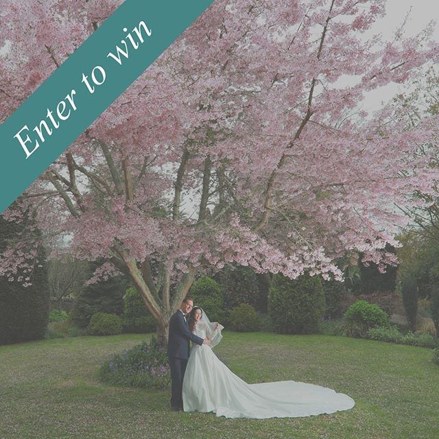 One Wonderful Day - Wedding Fair GIVEAWAY!!! To be in with a chance to receive a double pass to One Wonderful Day - Waikato Wedding Fair 2018 & win a night for two at English Cherry Tree Manor in Tamahere, followed by a private September photo session on the driveway to coincide with the cherry blossoms flowering. 🌸🌺🌸 Head to our Instagram page @onewonderfuldaynz find this post and follow the super easy steps to be in to win before 2pm on Saturday 25th of August, no limit on entry!  The winner will be announced in @onewonderfuldaynz insta stories, Saturday the 25th of August.  One Wonderful Day - Wedding Fair,  Sunday 16th September 2018 The Atrium @ WINTEC House, Hamilton!  #onewonderfulday #weddingfair #nzwedding #waikatoweddings #nzbride #weddinginspiration #weddinginspo #weddingdirectory #nzbusiness #bridetobe #waikatobride #kiwibride #weddingplanning  #wedinwaikato  #weddingplanner  #waikato #giveaway #nzpuretour