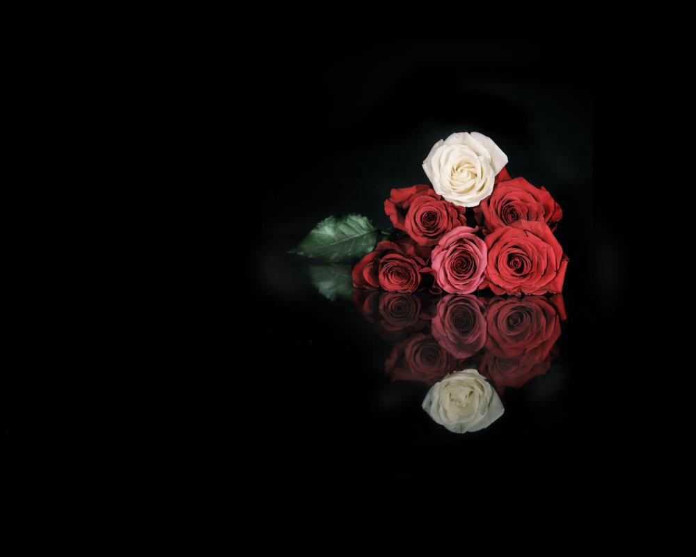 flowers #3.jpg