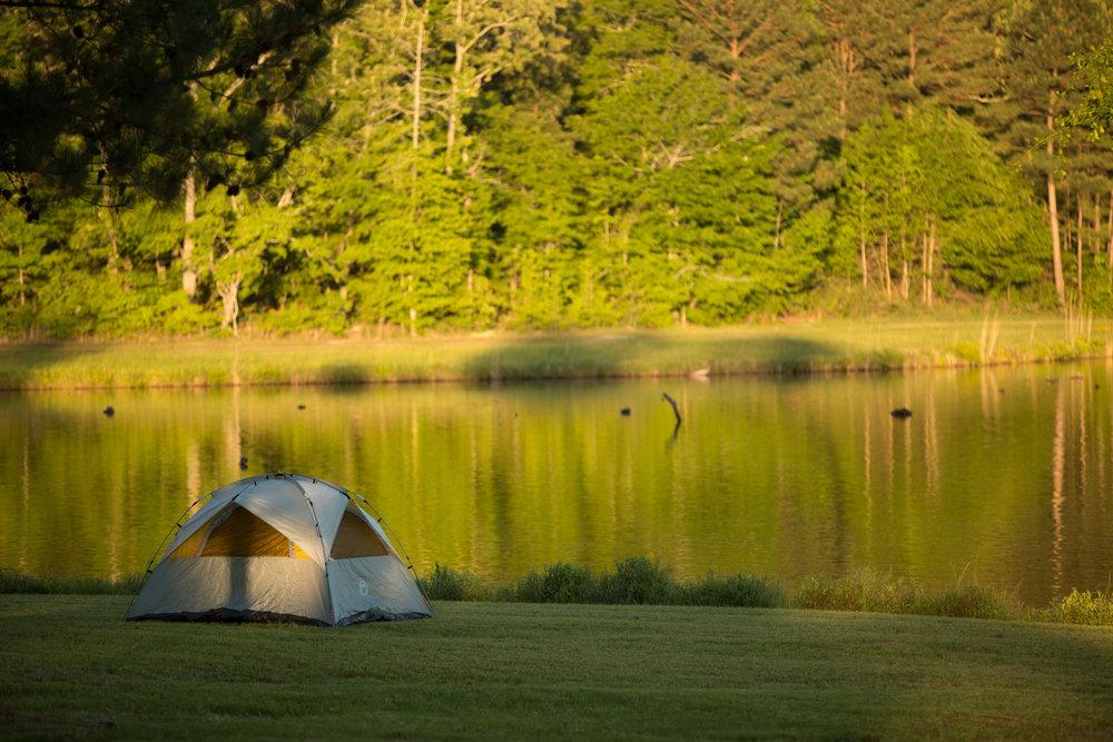 Tent Camping at Strange Farms
