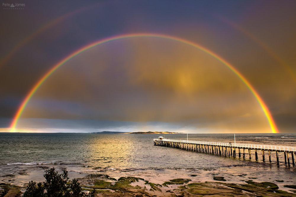 Lonny rainbow
