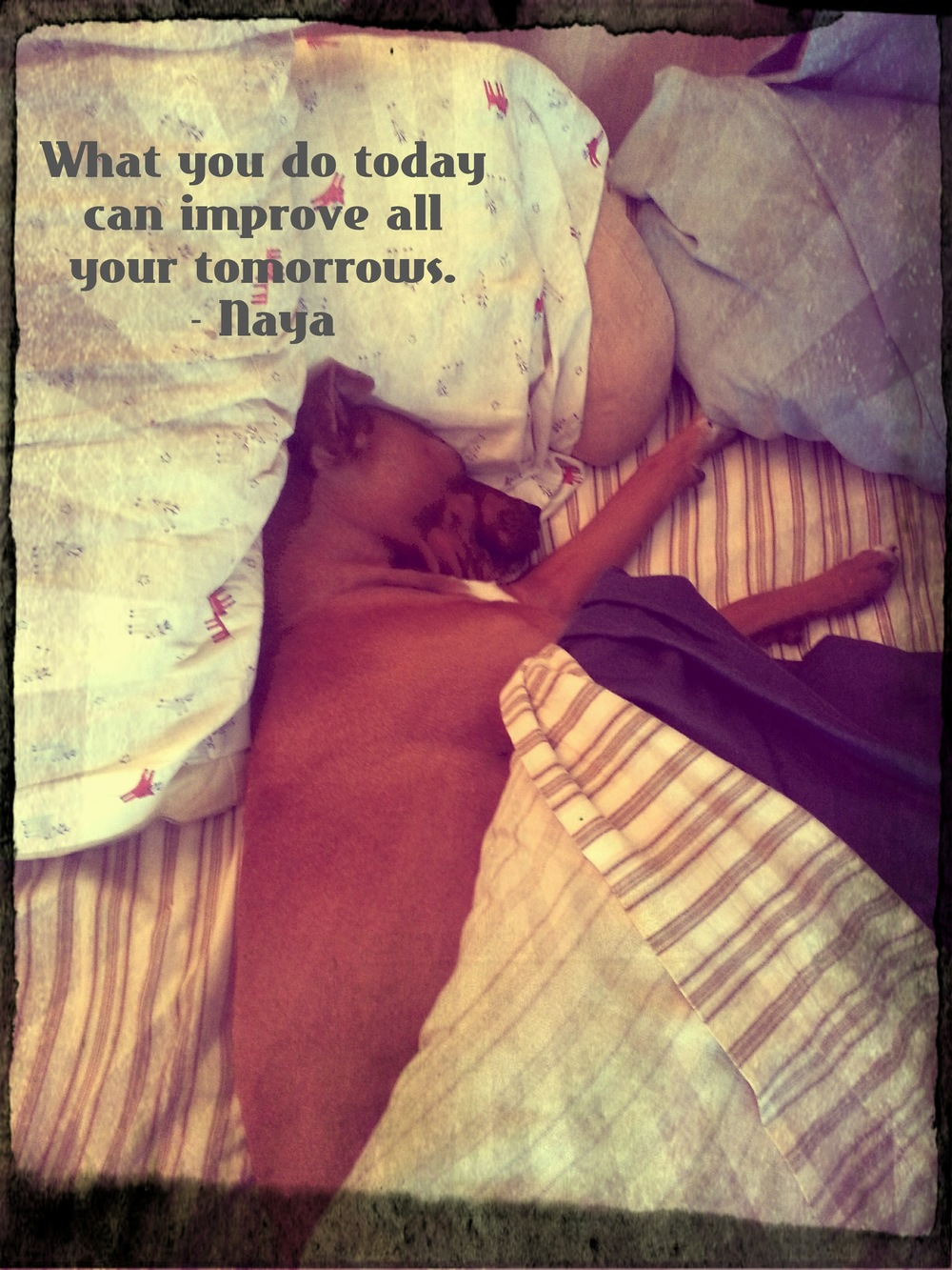 What you do today can improve all your tomorrows.    - Naya