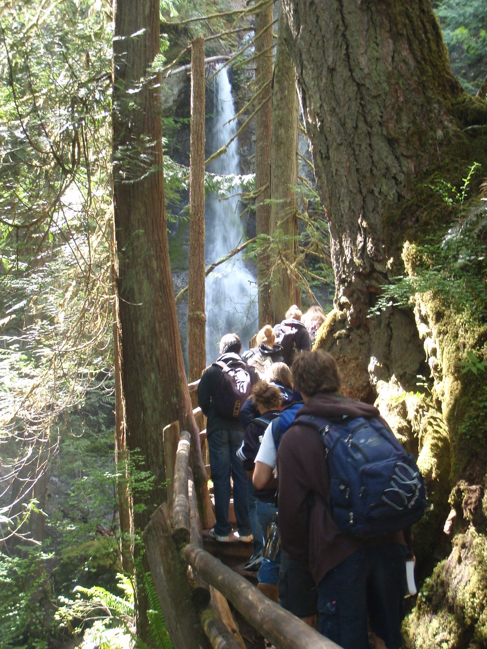 hiking_marymere_falls.jpg