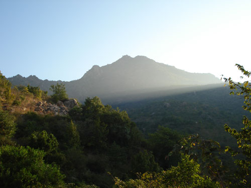 Arunachala-Retreat-Pic-6-jj.jpg