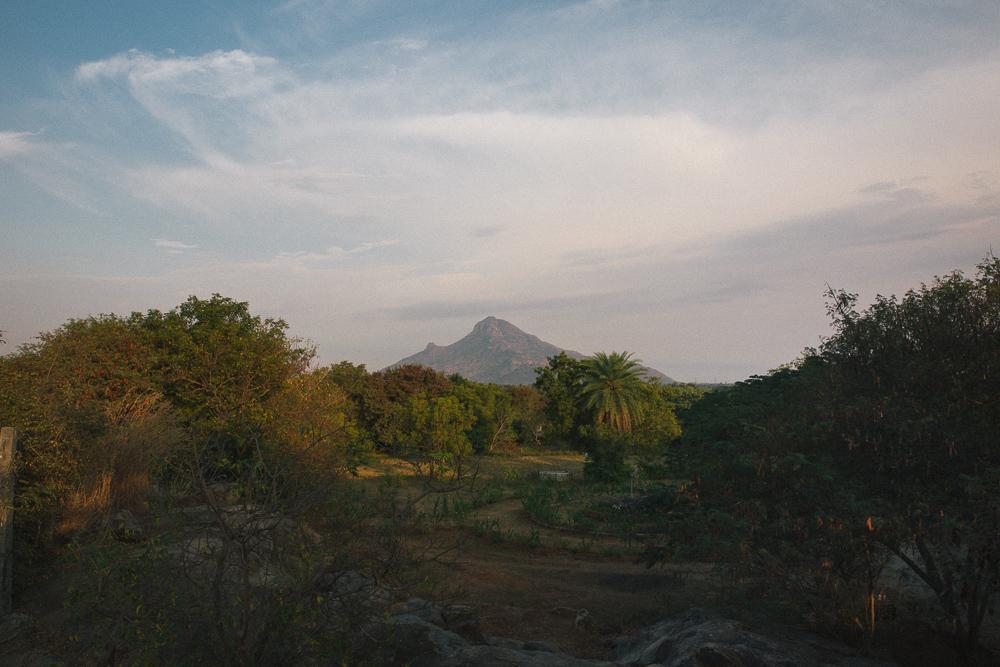 arunachala (10 of 36).jpg